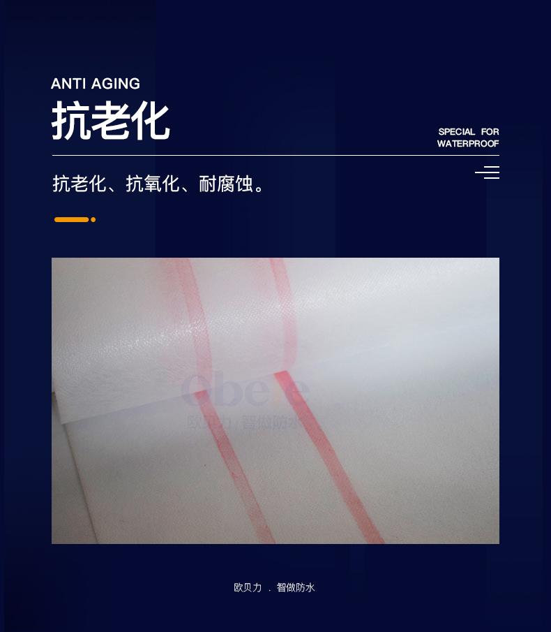 丙滌綸布_04.jpg